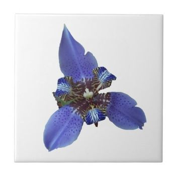 Purple Iris Flower Small Ceramic Tile