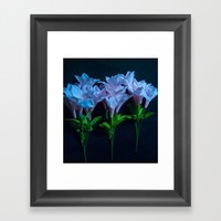 pink and blue flowers on black Framed Art Print by Scott Hervieux
