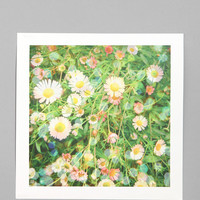 Cassia Beck For Society6 After The Rain Print