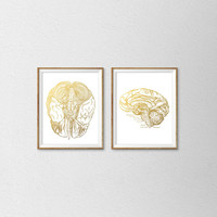Anatomical Faux Gold Foil Brain Prints. Set of 2 Prints. Vintage Replication Wall Art. Human Brain Print. Brain Anatomy Poster. Scientific.