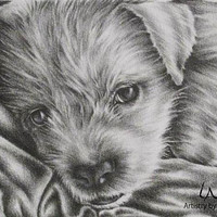 Personalized pet portrait black and white of ONE PET, original pencil pet drawing, dog animal pet lover, pencil portrait, gift, pet sympathy