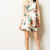 Botanic Atelier Peplum Dress by Anthropologie Red Motif L Dresses