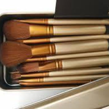 12 pcs Professional  makeup brushes tools set