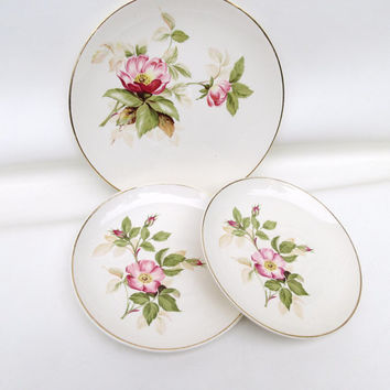 Vintage China Cake Plates / Small China Dishes / Dessert Plates – Pink Roses