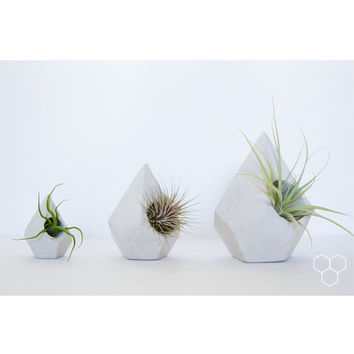 Teardrop Geometric Concrete Planter - Plant not included