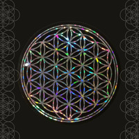 Flower of Life Sticker / Holographic / Window Sticker / Car sticker / Laptop Sticker / Sacred Geometry Sticker / Silver vinyl