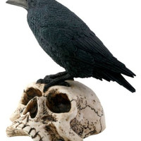 Black Raven Sitting on Skull Statue Cemetery Figure