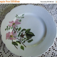 SALE 1886 Rare Haviland Limoges Dogwood Hand Painted Plate Signed By Artisan H&C L Limoges China Hand Painted Limoges