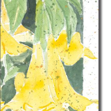 Boxed Cards- Angel Trumpet