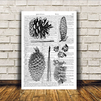 Nature art Pine cone poster Modern decor Dictionary print RTA72