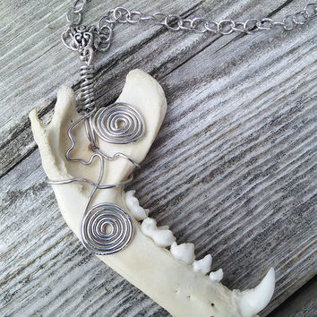 Raccoon Jawbone Necklace - Real Animal Bone Jewelry - Crystal Gemstone Pendant - Magnetic Boho Jewelry - Lapis Lazuli Amethyst Jewelry