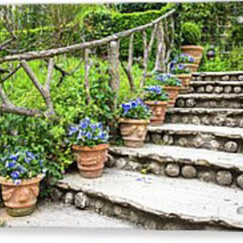 Stairway And Flower Pots