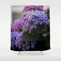 Big Hortensia flowers in front of a window Art Print by tanjariedel