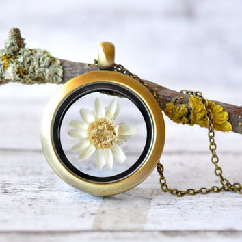 Window Locket Necklace with a Tiny White Wildflower - Rosebud Glass Pendant - Antiqued Brass Locket - Mini Terrarium Jewelry