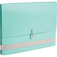 Martha Stewart Home Office™ with Avery™ Poly Accordion File, Blue, 12 Tabs, 13 Pockets