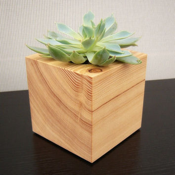 Cactus Planter Cube Shaped from Reclaimed Wood by andrewsreclaimed