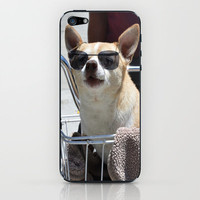 Hippy Dog iPhone & iPod Skin by RichCaspian | Society6