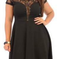 Lace-Paneled Sleeve Skater Dress for Plus Size