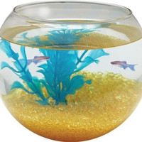AQUATICS - FISH BOWLS - GLASS BOWL SPHERE - 1 GALLON - KOLLER PET GROUP - UPC: 49146003506 - DEPT: AQUATIC PRODUCTS