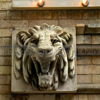 "Lion Head Architectural Building Detail - Modern Wall Art  - Philadelphia Architecture -  Fine Art Photography - 8""x8"" Square Art"