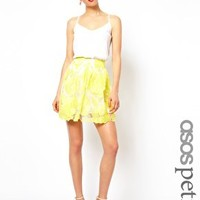 ASOS PETITE Exclusive Skater Skirt In Embroidered Flowers at asos.com