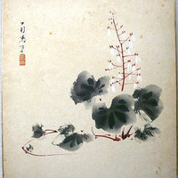 Vintage Japanese Painting Saxifrage in Showa Period