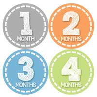Baby Boy Monthly Milestone Stickers Style #368