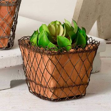 Woven Wire Square Basket with Terra Cotta Pot - Green/Rust
