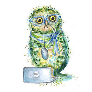Green Owl With Notebook Original Watercolor by Mysoulfly on Etsy