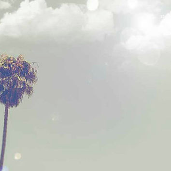 Beach Photography Lone Palm Tree Venice Beach Clouds Summer Fine Art Print Travel California Los Angeles Nursery