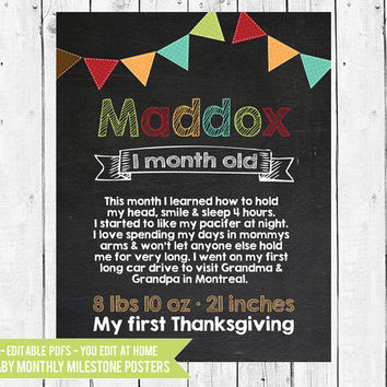Baby's First Year Monthly Chalkboard Photo Prop - Month by Month - Monthly Milestone Chalkboard -12 PDFs You Edit In Adobe Reader or Acrobat