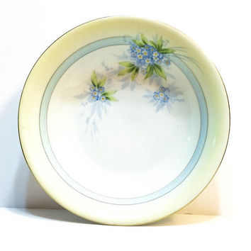 Sandia Hand Painted China Bowl, P T Bavarian 9 Inch Serving Bowl, Yellow & Blue, Floral Motif, Farmhouse Decor, Signed Antique Porcelain