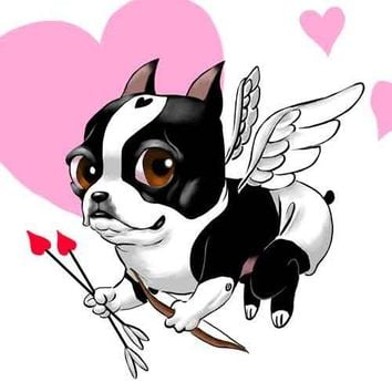 Boston terrier love card by rubenacker on Etsy