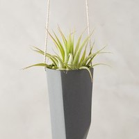 Crystal-Cut Hanging Planter by Anthropologie