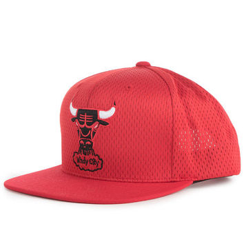 The Chicago Bulls Jersey Mesh Snapback