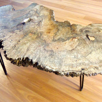 Live Edge Maple Burl Coffee Table with Hairpin Legs
