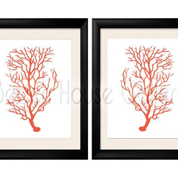 Antique Illustration Orange Coral Sea Coral, Print Set Two 8x10 Coral Wall Art, Coral Print, Sealife print , Orange Coral