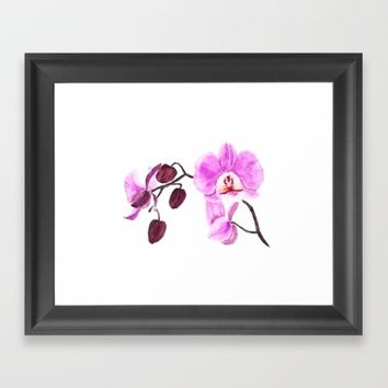 pink orchid flower watercolor painting  Framed Art Print by Color and Color