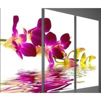 hand-painted promotion free shpping framed on the back oil wall art pink Water red flowers home decoration abstract Landscape oil painting on canvas 3pcs/set: Amazon.ca: Home & Kitchen