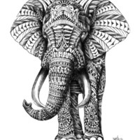 Ornate Elephant Art Print by BioWorkZ