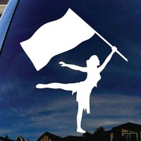 Color Guard Car Window Vinyl Decal Sticker