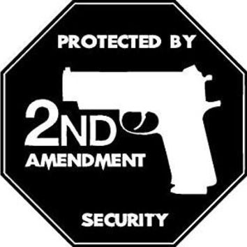 Protected by the Second Amendment  Vinyl Car/Laptop/Window/Wall Decal