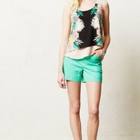 Tailored Remy Shorts by Cartonnier