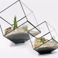 Cube Shaped Glass Terrarium