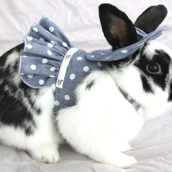 Bunny harness dress , hat and matching leash . Made to order. Also for your guinea pig , chinchilla , rat ,ferret or small pet