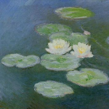 Waterlillies, Evening