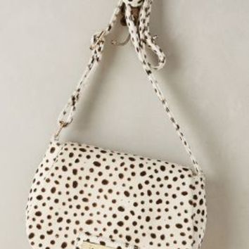 Cybele Calf Hair Crossbody Bag by Tan & Brown Black & White One Size Bags