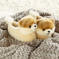 SG Footwear 'Boo - The World's Cutest Dog' Slipper (Toddler, Little Kid & Big Kid)