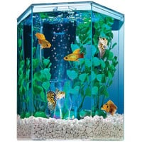 Walmart: Tetra Bubbling LED Hexagon Aquarium Kit, 1ct