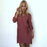 Collide Shift Dress In Barn Red